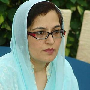 Mehjabeen Ghazal Ansari